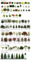 Revit RPC Plant and Tree Reference Guide (image)