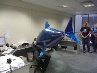 Attacked at my desk ... by a flying shark