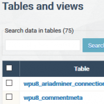 The Most Important Tables When Rebuilding WordPress Database after a Recent Restore